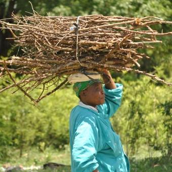 woman balancing wood