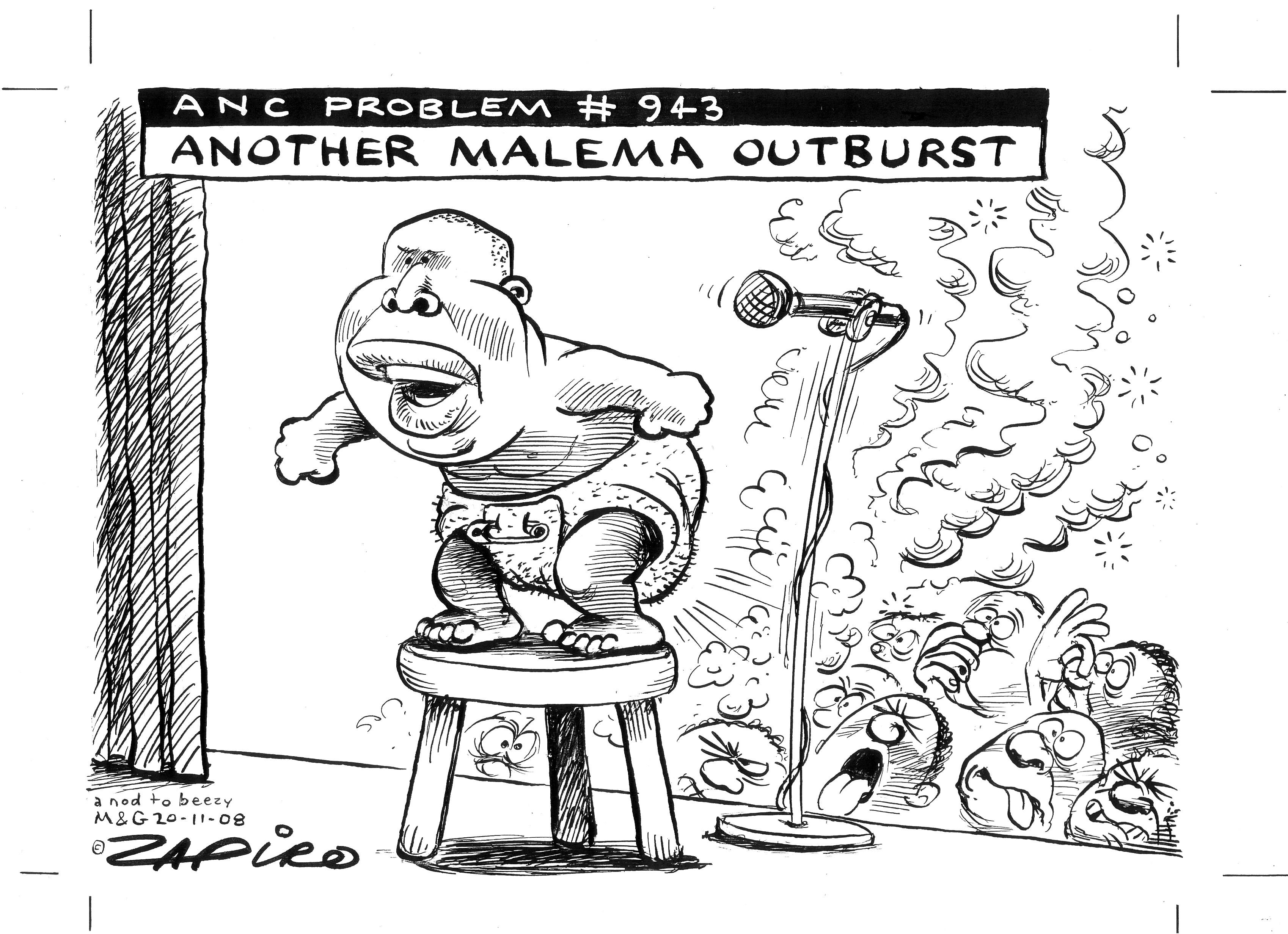 Zapiro's Malema