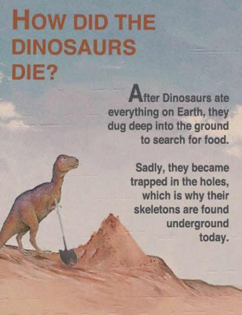 Dig Dinosaur Dig