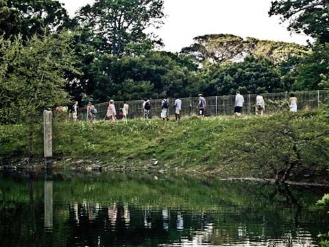 UCT Reservoir