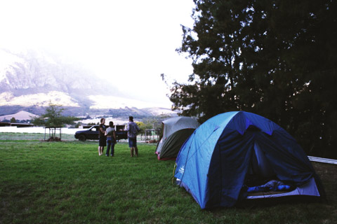 Harvest - Camp