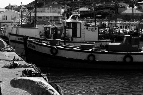 Hout Bay - Harbour
