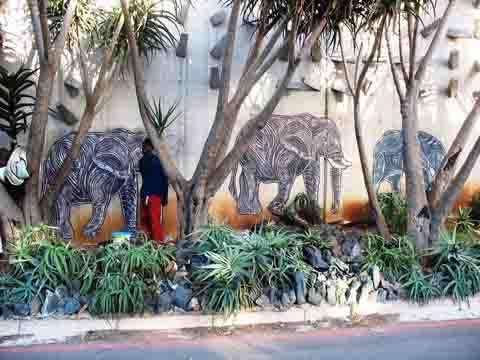Free Durban Elephants
