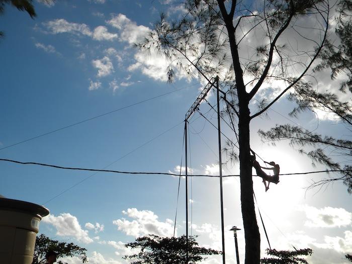 AOC trapeze © KDK