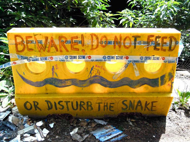 snake disturbance