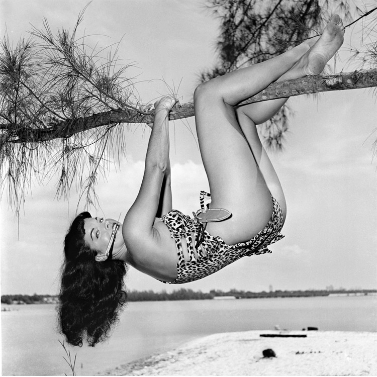 BETTIE-IN-TREE