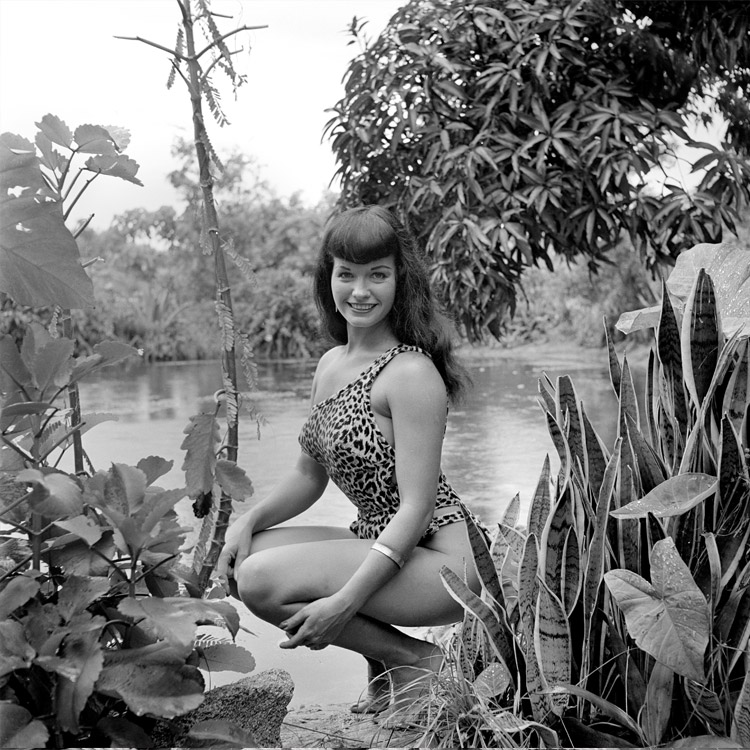 BETTIE-PALM-LEAVES