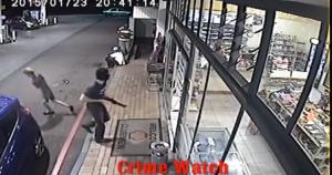 robber white